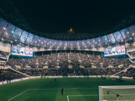 Domenico Berardi Tottenham Hotspur Spurs Stadium